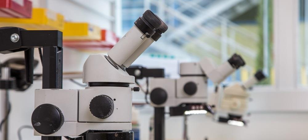 Tıbbi Aletler; Hassas ve Optik Aletler ile Saat İmalatı